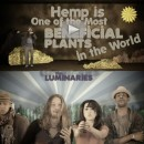 Hemp Can Save The World music video!